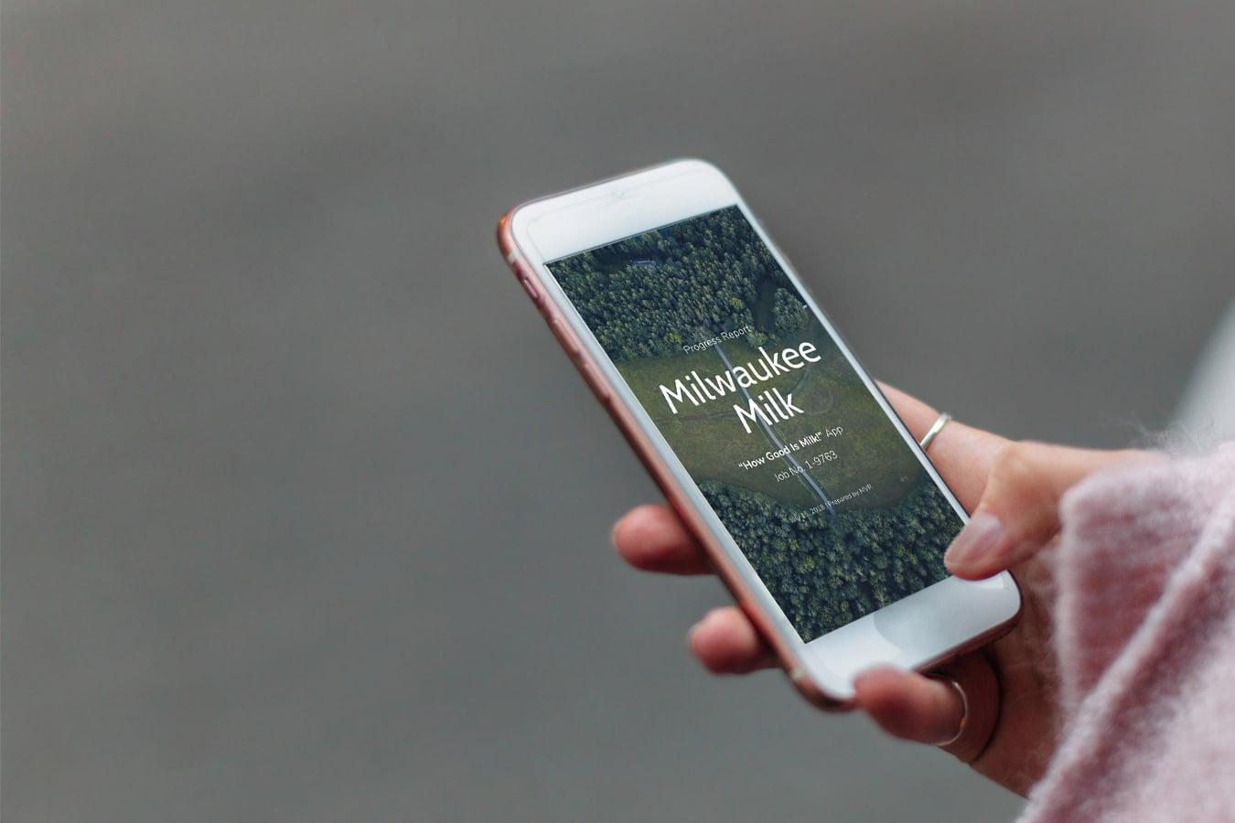 mobile-web-development-agency-progress-report-1